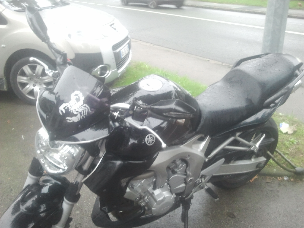 YAMAHA FZ6 N  2004 photo 3