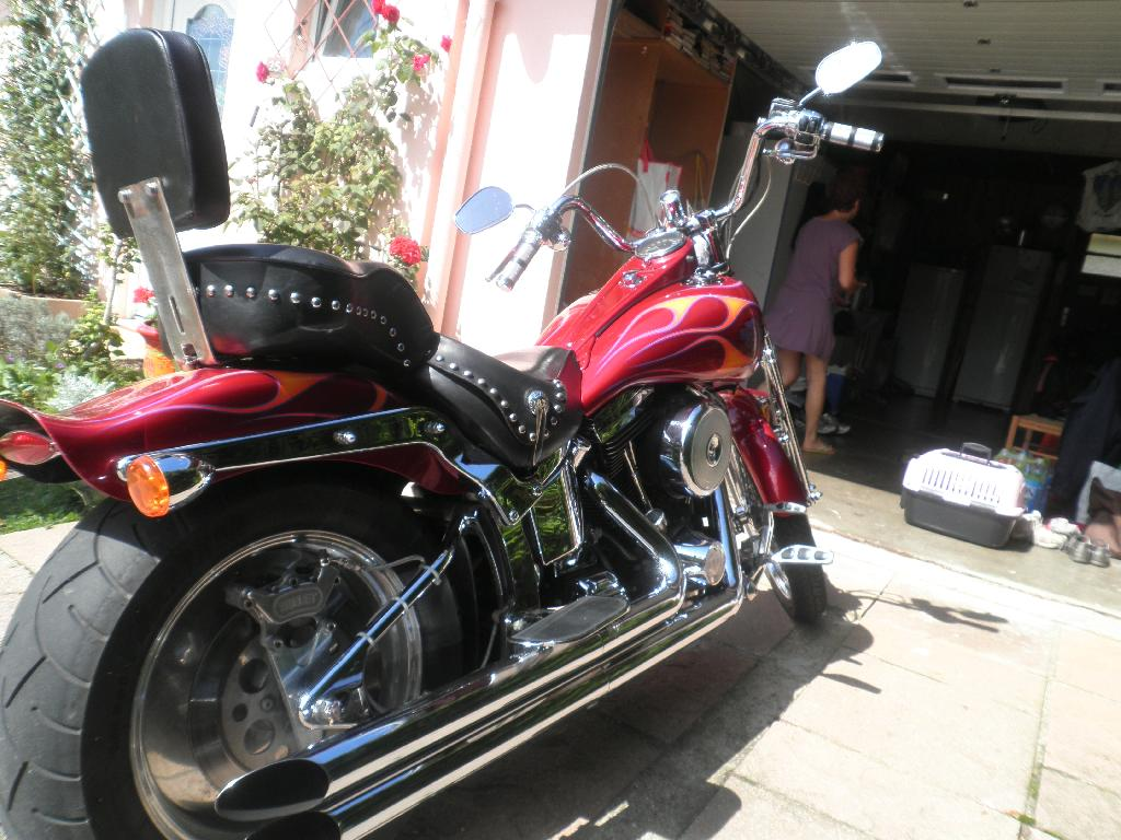 annonce moto harley
